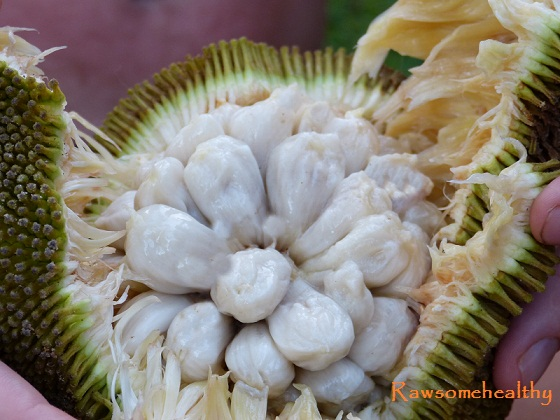 The Top 10 Exotic Fruits You Must Try