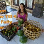 How To Switch From Raw Till 4 To A Fully Raw Vegan Diet
