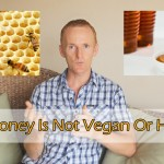 Why Honey Is Not Vegan Or Necessary To Eat