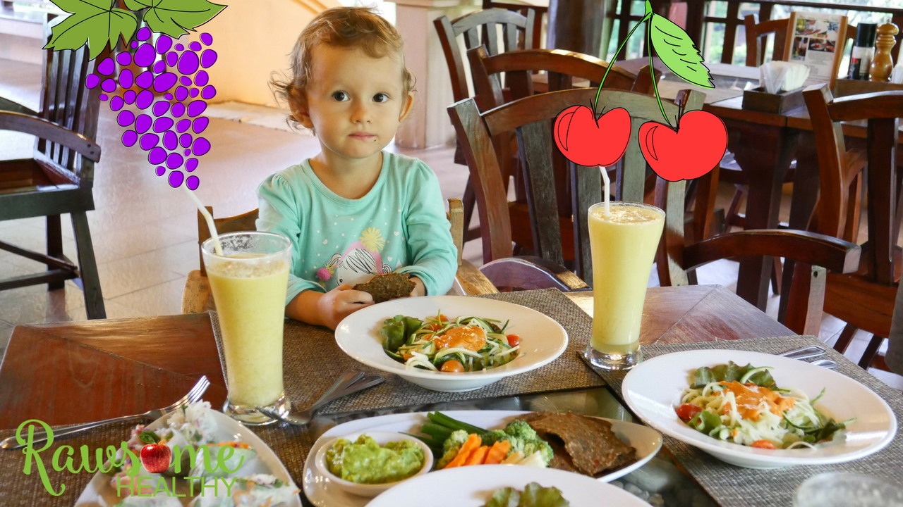 An update on our 2 1/2 year old raw food toddler