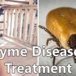 How Elisabeth Found An Effective Lyme Disease Treatment