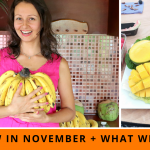 Raw In November + Staying Healthy On The Move (A Day In Our Lives)