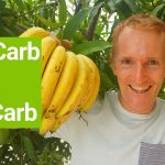 High Carb Diet, Slow Carb Diet, Zero Carb Diet – How Many Carbs?